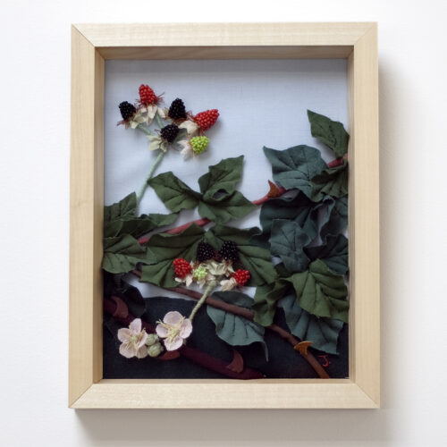 Blackberry Bush Textile Landscapes by Jessica Coote