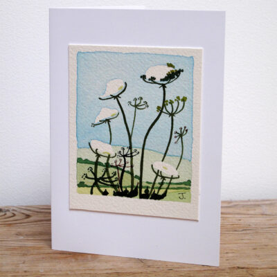 Cow Parsley - Original Watercolour Painting by Jessica Coote