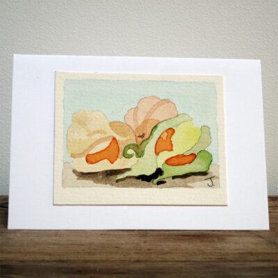 Physalis - Original Watercolour Painting by Jessica Coote